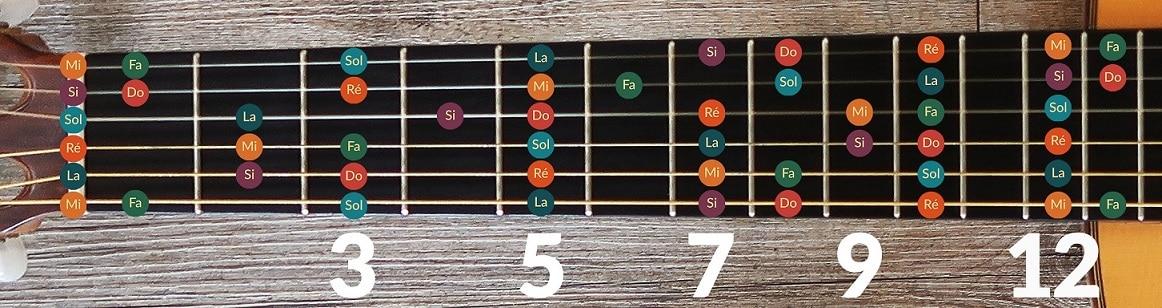 La Guitare en 3 Jours © - notes sur le manche